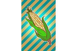 corn maize cob. appetizing