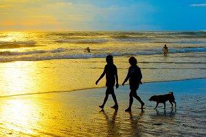People walking dog beach. Bali