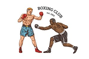 Boxers are training. Sport