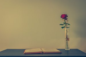 Book and rose 1