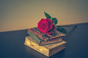 Old books and rose 1