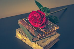 Old books and rose 3