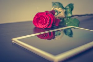 Tablet and a rose 1