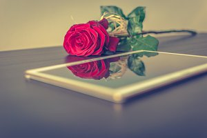 Tablet and a rose 2