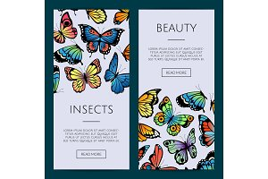 Vector decorative butterflies web