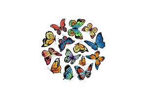 Vector decorative butterflies in