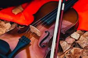 violin closeup on a red plaid in the