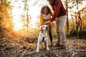 A senior couple with a dog in an