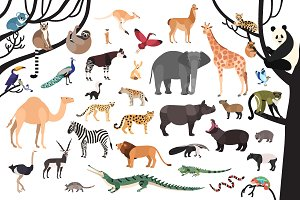 Exotic animals bundle