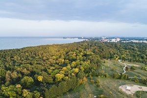 Forest seashore by the Baltic Sea in