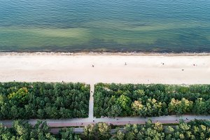 Seashore and green trees from top vi