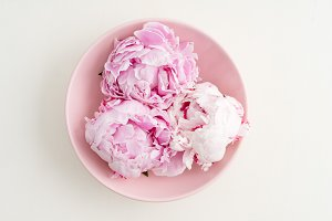 Freshly cut peony blossoms