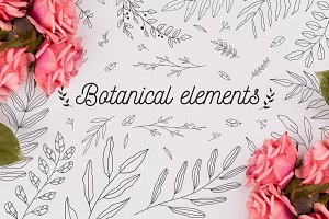 110 Hand drawn botanical elements