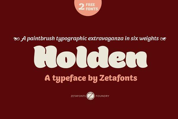Sans Serif Fonts: Zetafonts - Holden - Intro Promo 80%