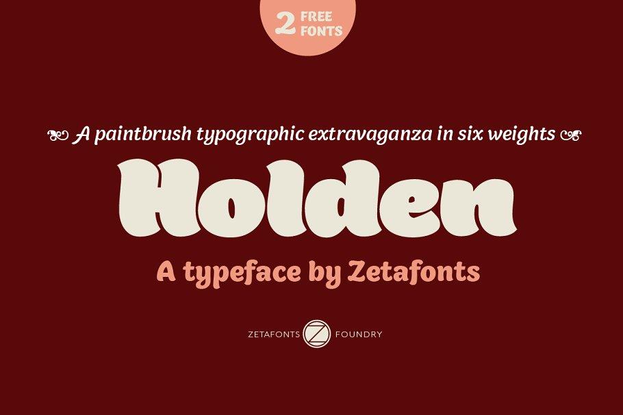 Holden - 12 fonts ~ Sans Serif Fonts ~ Creative Market