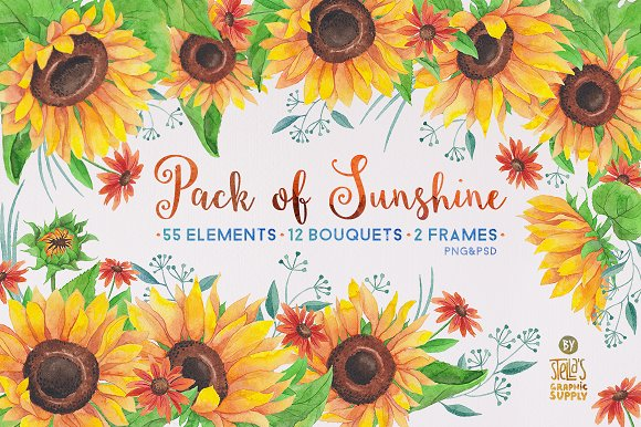 watercolor sunflowers illustrations - Sunflower Picture Frames