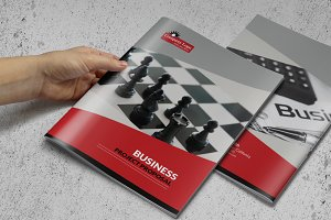 A4 Business Proposal or Brochure