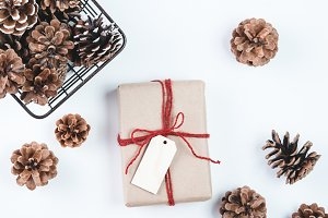Pine Cones and a Present