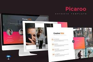 Picaroo - Keynote Template
