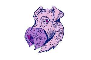 Bingley Terrier Head Etching Color