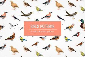 Birds seamless patterns set