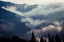 Foggy morning landscape by  in Nature