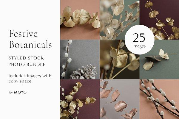Minimalist Festive Botanical Photos