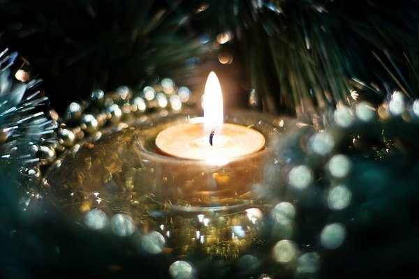 Holiday Stock Photos: Annelevens.com - It's Beginning To Look A Lot Like