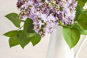 Lilac Bouquet in metal jug