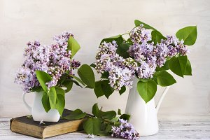 Lilac Bouquet in metal jug