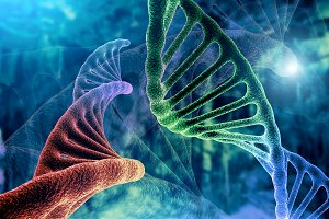 DNA strand and Cancer Cell Oncology