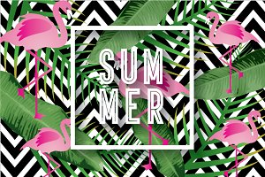 summer template vector