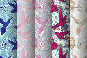 5 Patterns + Vector Birds isolated