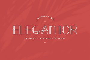 Elegantor | Vintage Display Font