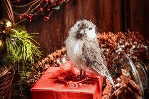 Christmas gift box with bird