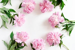 Border frame made of pink peonies