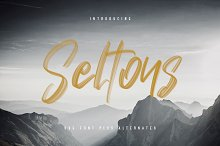 Seltons - SVG Font by  in Script Fonts