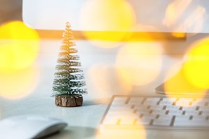 A small fir tree stands on a white d