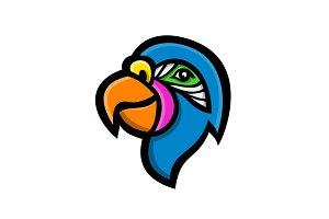 Parrot Head Mascot
