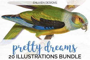 Watercolor Parrot Bundle (20)