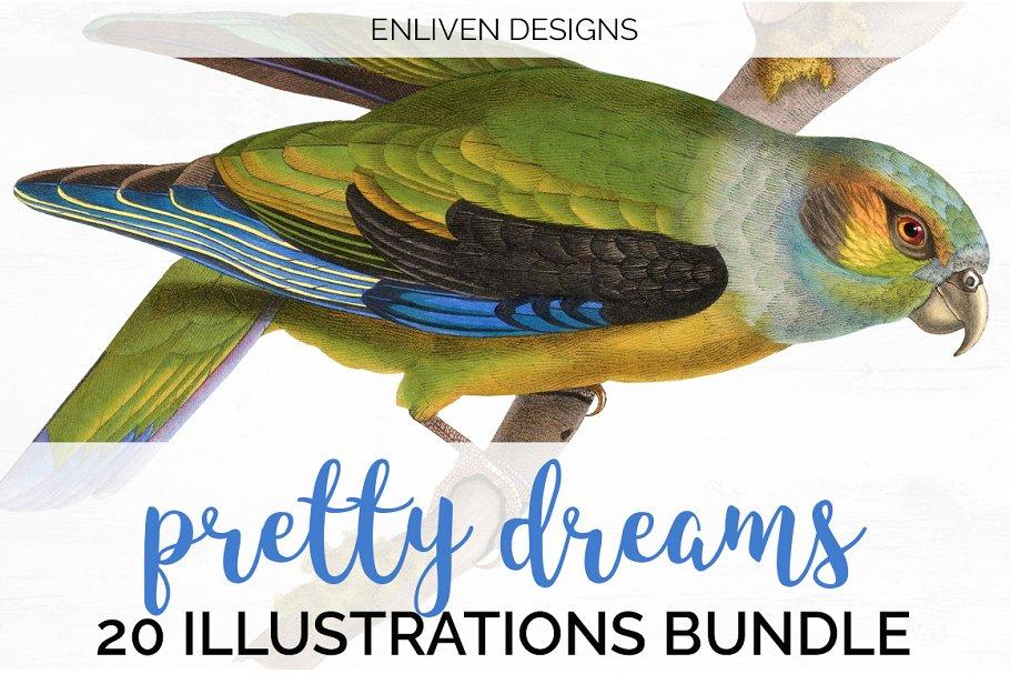 Watercolor Parrot Bundle (20)