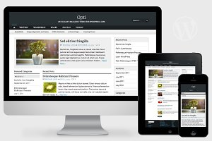 Opti - Responsive WordPress Theme