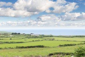 Idillic landscape with sheep, lambs,