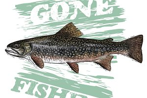 """Gone Fishing"" Trout Illustration"