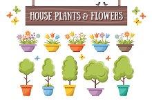 House Plants & Flowers