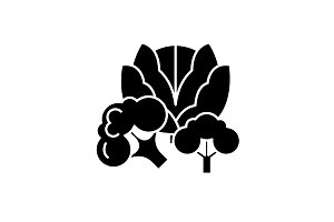 Broccoli black icon, vector sign on