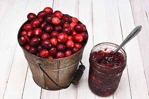 A bucket of fresh picked cranberries