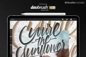 DevBrush™ 4.0 for Procreate