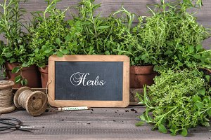 Fresh herbs with chalkboard