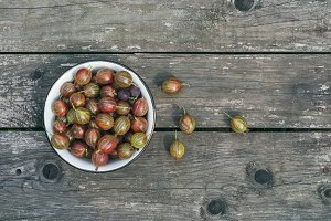 A bowl of ripe gooseberries